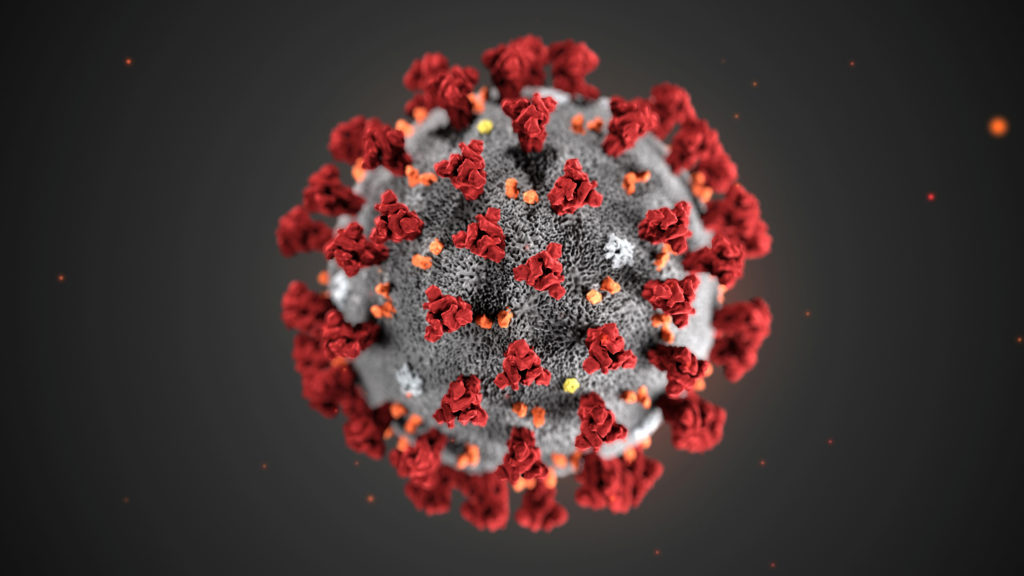 An illustration, created at the Centers for Disease Control and Prevention (CDC), depicts the 2019 Novel Coronavirus - The ultrastructural morphology exhibited by the 2019 Novel Coronavirus (2019-nCoV), which was identified as the cause of an outbreak of respiratory illness first detected in Wuhan, China, is seen in an illustration released by the Centers for Disease Control and Prevention (CDC) in Atlanta, Georgia, U.S. January 29, 2020. Alissa Eckert, MS; Dan Higgins, MAM/CDC/Handout via REUTERS. THIS IMAGE HAS BEEN SUPPLIED BY A THIRD PARTY. MANDATORY CREDIT - RC2WPE9DIU7K